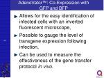 adenovator co expression with gfp and bfp1