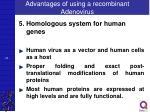 advantages of using a recombinant adenovirus4