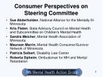 consumer perspectives on steering committee