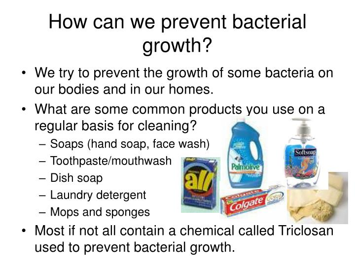 Ppt Antibiotic Resistant Bacteria Natural Selection At
