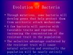 evolution of bacteria