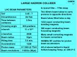 large hadron collider1