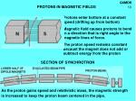protons in magnetic fields