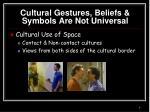 cultural gestures beliefs symbols are not universal