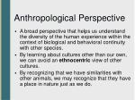 anthropological perspective