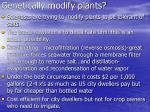 genetically modify plants