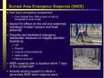 burned area emergency response baer