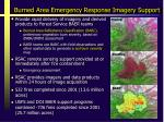 burned area emergency response imagery support