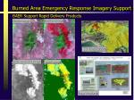 burned area emergency response imagery support1