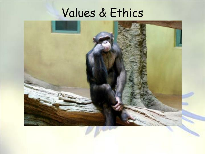 values ethics instrumental or utilitarian n.