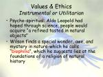 values ethics instrumental or utilitarian6
