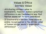 values ethics intrinsic values10