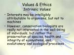 values ethics intrinsic values2