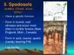 5 spodosols sp od os greek wood ashes