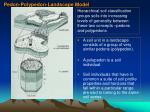 pedon polypedon landscape model