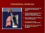 inhalation anthrax