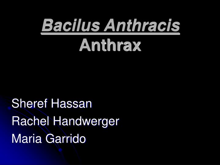 bacilus anthracis anthrax n.