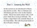 part 1 amaroq the wolf1