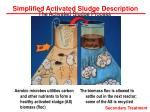 the activated sludge process