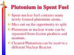 plutonium in spent fuel