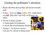 getting the pollinator s attention