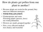 how do plants get pollen from one plant to another