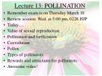 lecture 13 pollination