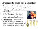 strategies to avoid self pollination