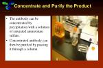 concentrate and purify the product