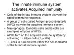 the innate immune system activates acquired immunity