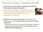 gestion des risques dimension culturelle1