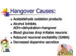 hangover causes1