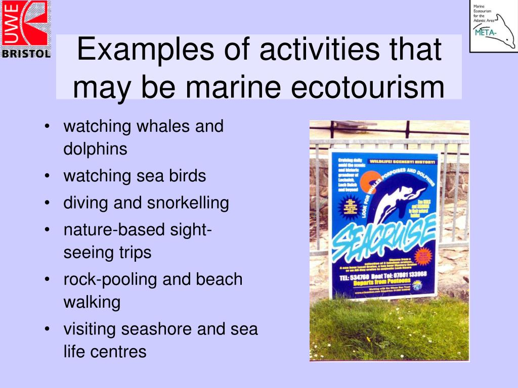 Examples of activities that