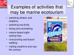 examples of activities that may be marine ecotourism