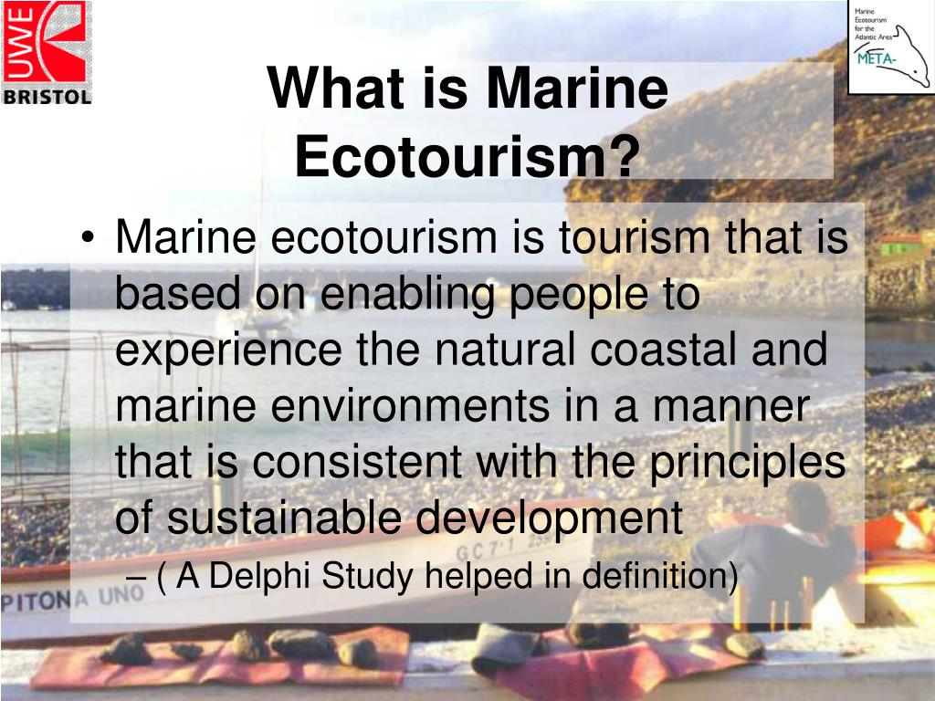 What is Marine Ecotourism?