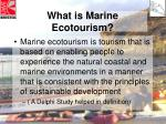 what is marine ecotourism