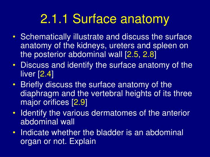 Ppt 21 Surface Anatomy 22 Anterior Abdominal Wall Powerpoint