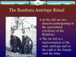 the bambara antelope ritual