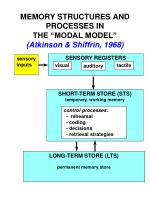 memory structures and processes in the modal model atkinson shiffrin 1968