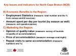 key issues and indicators for north cape breton ncb20