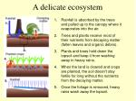 a delicate ecosystem