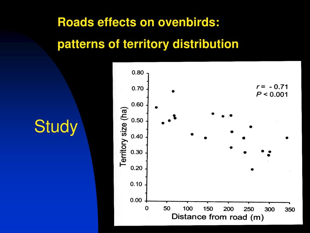 Roads effects on ovenbirds:
