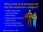 what kinds of businesses fall into the ecotourism category