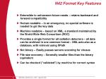 n42 format key features