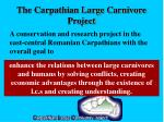the carpathian large carnivore project