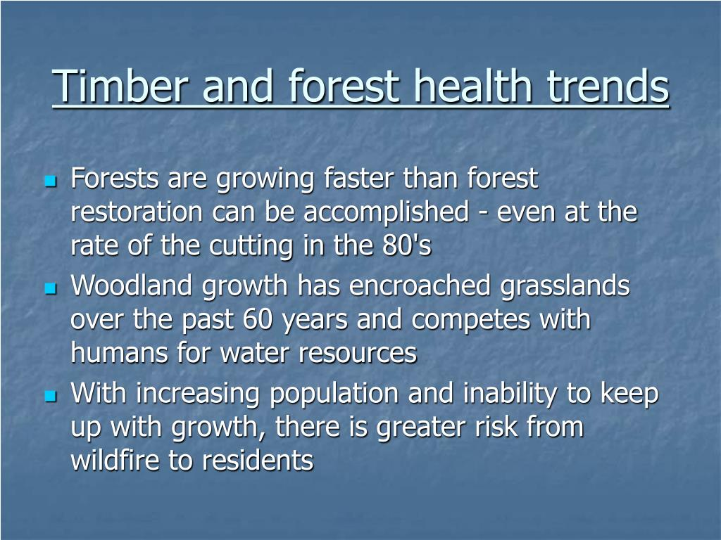 Timber and forest health trends