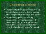 development of the ear