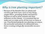 why is tree planting important