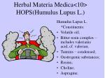 herbal materia medica 10 hops humulus lupus l