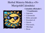 herbal materia medica 9 marigold calendula